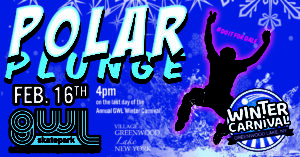 GWLSkatePark fundraising event, Polar Plunge,